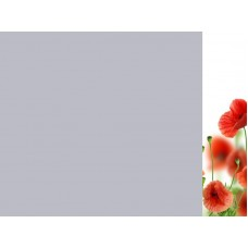 Зеркало Цветы 16