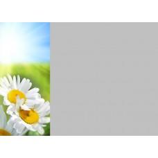 Зеркало Цветы 6