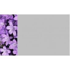 Зеркало Цветы 8