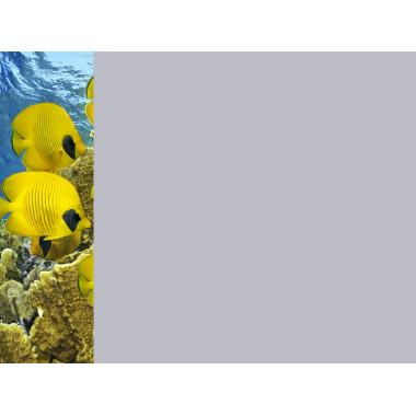 Зеркало Море 16