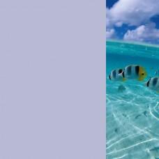 Зеркало Море 8