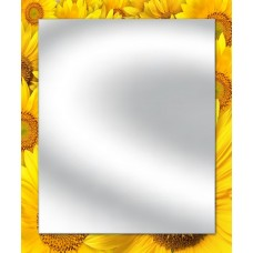 Зеркало Периметр 10