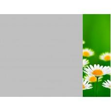 Зеркало Цветы 11