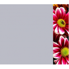 Зеркало Цветы 3