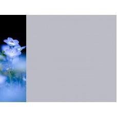 Зеркало Цветы 9