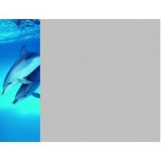 Зеркало Море 10